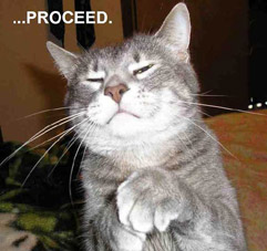 proceed lolcat